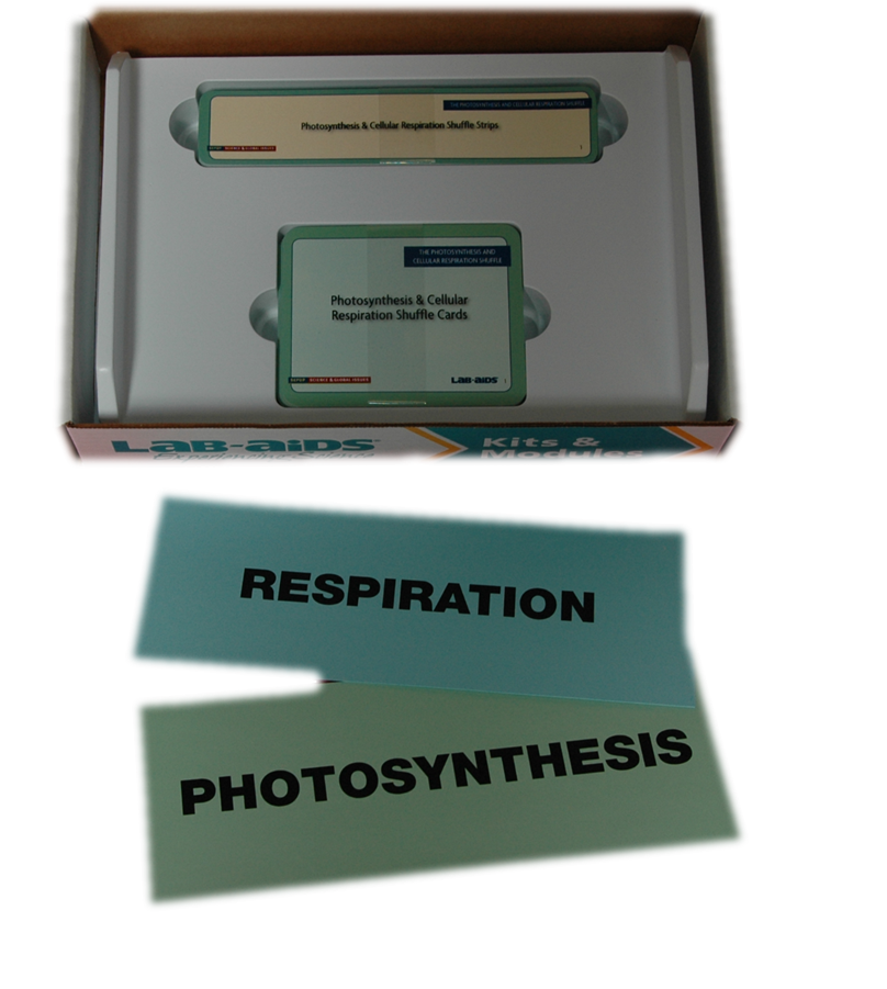 Photosynthesis and Cellular Respiration (Developed by SEPUP)