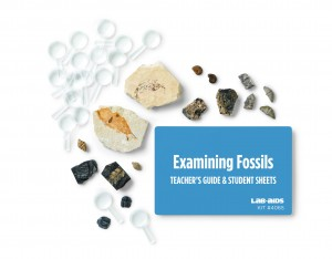 Examining Fossils (Developed by SEPUP)